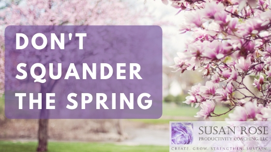 Will You Squander Or Capitalize On The Spring Selling Season?